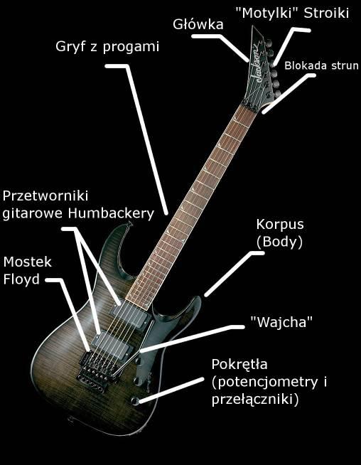Floyd budowa gitary